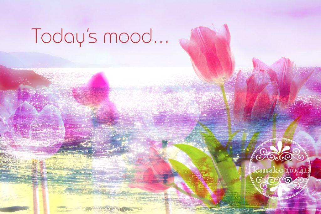 <Today's mood…> 今日のオラクルカード:アロマはスイート マジョラム a0405